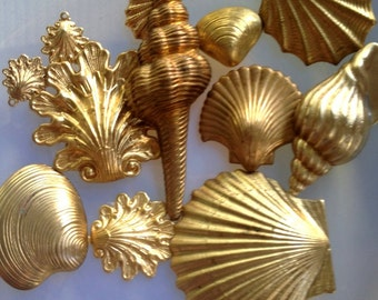 Shell Collector (13 pc)