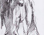 Original Horse Head Sketch 256