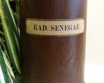 1920's Large 9 inch Apothecary Pharmacy Antique Jar, Labeled RAD. SENEGAE