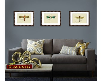 Dragonfly Print Set, Set of 3, Antique Dragonfly, Vintage Insect Prints, Botanical Nature Art, Wall Decor, Green prints, Yellow prints