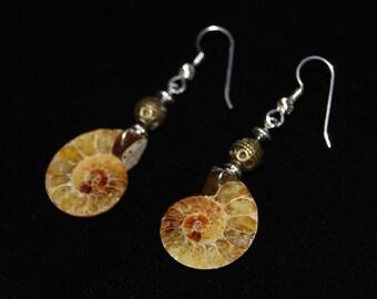 Honey Colored Ammonite Earrings