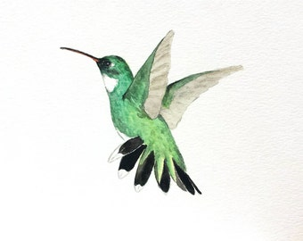 "ORIGINAL Watercolor Hummingbird  - 5""x7"" Bird  Painting, Hummingbird Art, Nursery Art, Broad-billed Hummingbird"