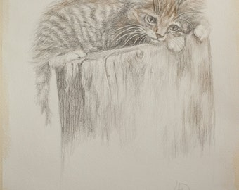 Kitty -Original SILVERPOINT Drawing - Unique Artwork, 32×41cm, Home Decor, Living Room Wall Decor, Wall Hanging Art, Animal