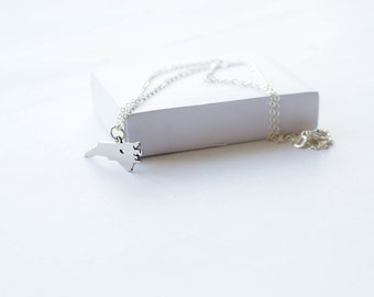 State Necklace! State of North Carolina Necklace! Sterling silver chain