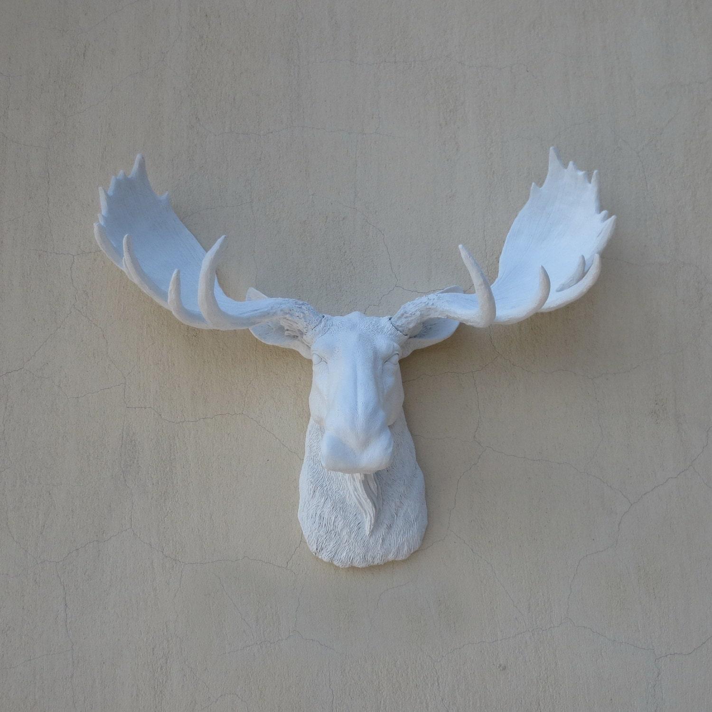 Tenture murale white moose head t te d 39 orignal par - Tete d animal murale ...