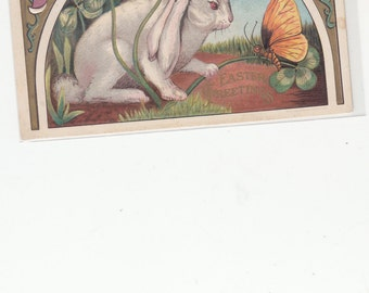 1910 Antique Postcard Easter Rabbit Examines Butterfly Art Nouveau Border Very Good Embossing