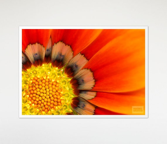 Wall Art Prints, Wall Decoration, Any Image From Shop, Professional Prints, Paper Print, Wall Decor