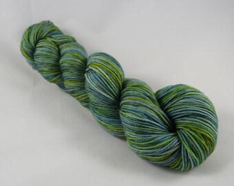 Mossy Glade - DK Weight Yarn -   Hand Dyed Superwash Merino Wool