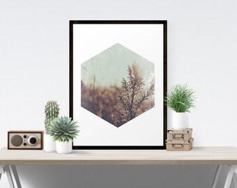 Minimalist Geometric Hexagon Landscape Natural Hipster Fine Art Print