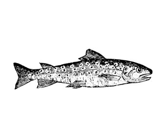 TROUT FISH STAMP Salmon Rubber Stamp Fishing Rustic Cabin Camping Lake Decor Cling Stamp Extra Large Cling cushion rubber stamp.(49-03)