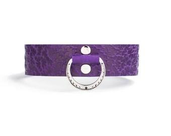 Collar purple spank