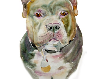 Custom Pet Portrait  - Custom Portraits - Pet Portrait - Watercolor Painting - Dog Portrait