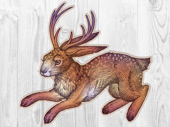 Jackalope - Wikipedia