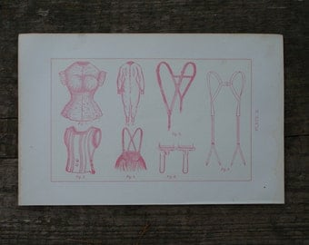 1893 - Healthy Clothing - Antique Anatomical Print