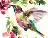 Humming Bird Watercolor Painting Art Print, Bird Watercolour Art