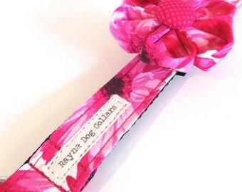 Dancing Daisies Pink Designer Dog Collar, Custom Dog Collar, Girl Dog Collar, Pink Dog Collar, Floral Dog Collar, Female Dog Collar