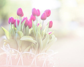 Photo of pink tulips in a bucket in soft pastel colours
