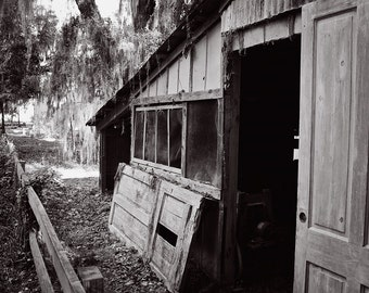 Black and White Photography, Shed, Old Farm House, Abandoned, Isolated, Woods, Worn Down House