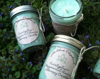 Eucalyptus & Peppermint aroma therapy soy candle