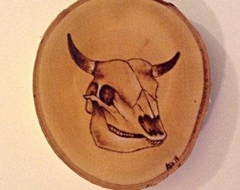 Cow Skull Pyrography on Birch
