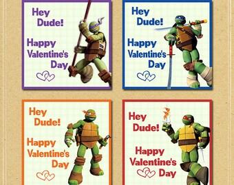 Teenage Mutant Ninja Turtle Valentines Day Card - TMNT Valentines - Ninja Turtle School Valentines