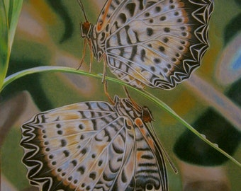 "Mating butterflies ORIGINAL OIL PASTELS painting 20"" x 28"" (50x70 cm) - art signed by artist"