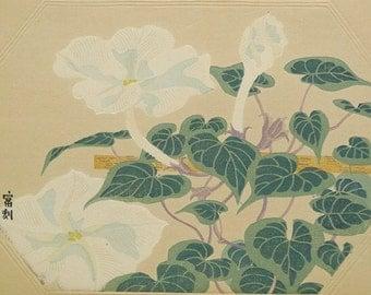 """Ukiyoe, Original Sōsaku-hanga, Woodblock print, antique, Tomikichiro Tokuriki, """"Lagenaria siceraria var. hispidar"""""""