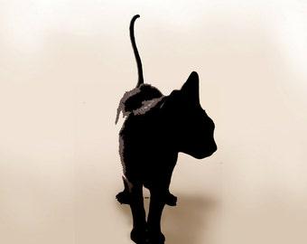 A  white cat, a black cat.