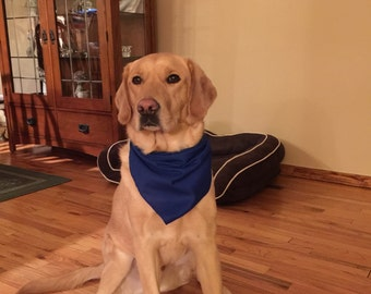 Royal Blue Dog Bandana