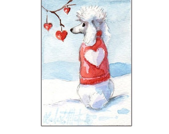 White Poodle for Valentines Day llmartin Original ACEO  Watercolor