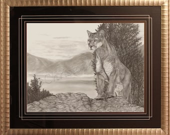 On The Look  (Cougar) - Original - Realistic Pencil Drawing