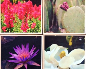 Atlanta Botanical Garden Custom Tile Photo Coasters