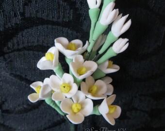 Handmade Gumpaste Flowers- Small Filler Flowers