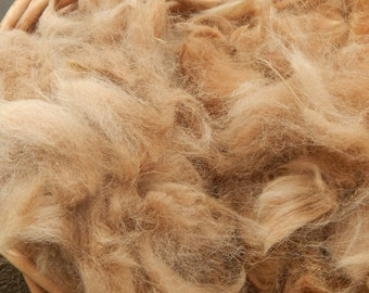 Fawn Alpaca Fiber, Natural Color, Spinning, Felting, Weaving, Soft, Unwashed, 8oz, Half Pound