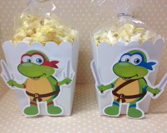 Teenage Mutant Ninja Turtles Party Popcorn or Favor Boxes - Set of 10