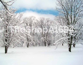 "Winter Snow Scene Photo - Pennsylvania Snow Scene Photo - Snow Covered Trees Photo - Instant Download - ""Snowy Grove"""
