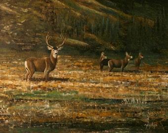Ron Jenkins, Oil on Artist Board,, Wildlife, Deer Signed Original Artwork
