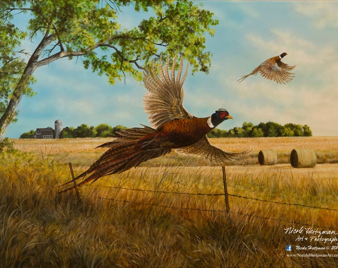Pheasant Print Pheasant Painting Gift for Men Pheasant Art Pheasant Hunting print Back Forty by Nicole Heitzman