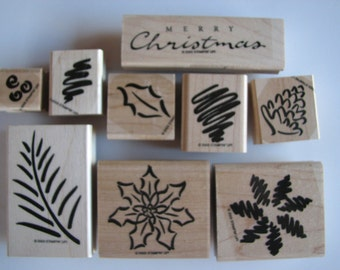 Stampin Up Christmas Foliage Stamp Set