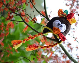 Tommy the Turkey Crochet Thanksgiving Hat, Newborn Hat or Photo Prop