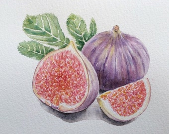 Original watercolor painting of Figs,watercolorart,fruit painting