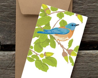 Bluebird and Live Oak -- 8 Blank flat cards and envelopes