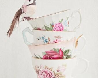 The Bird and Tea Cups - vintage tea cup photo, kitchen wall art, bird, shabby chic decor, granny chic, tea cup photograph, girls wall art