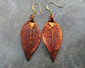 RESERVED  for only Quill - Real Leaf Earrings - Copper - Evergreen
