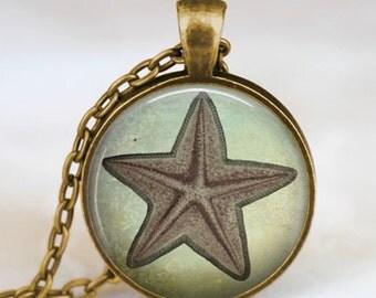 Starfish vintage necklace , starfish jewelry , starfish jewelry , sea jewelry, beach jewelry, sea marine jewelry