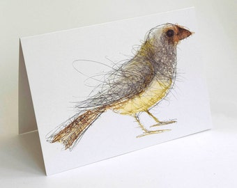 Starfinch Card, Greeting Card, Bird Art Card, Bridget Farmer Card, Australia, Australian Bird