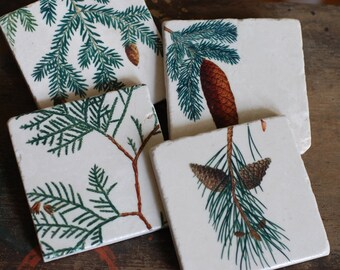 Stone Coasters - Pinecones set of 4