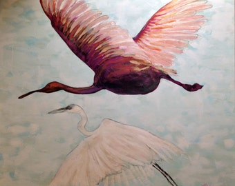 Roseate Spoonbill and Heron