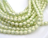 Sueded Gold Mint 6mm Firepolish Round Beads   25