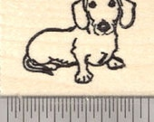 Dachshund Rubber Stamp, Dog, Small D26816 Wood Mounted